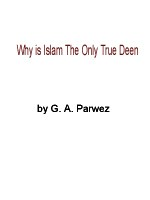 why-is-islam-the-only-true-deen